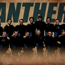 Disc Club Panthers retro wallpaper